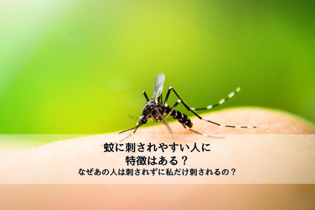 蚊に刺されやすい人に特徴はある?なぜあの人は刺されずに私だけ刺されるの?