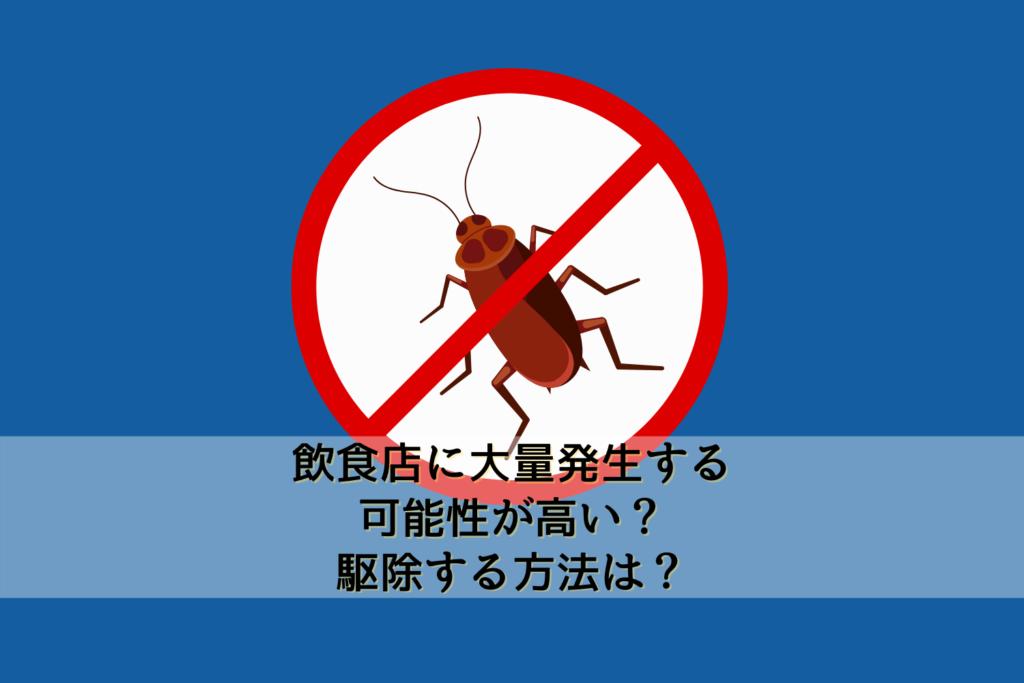 ゴキブリは飲食店に大量発生する可能性が高い?駆除する方法は?