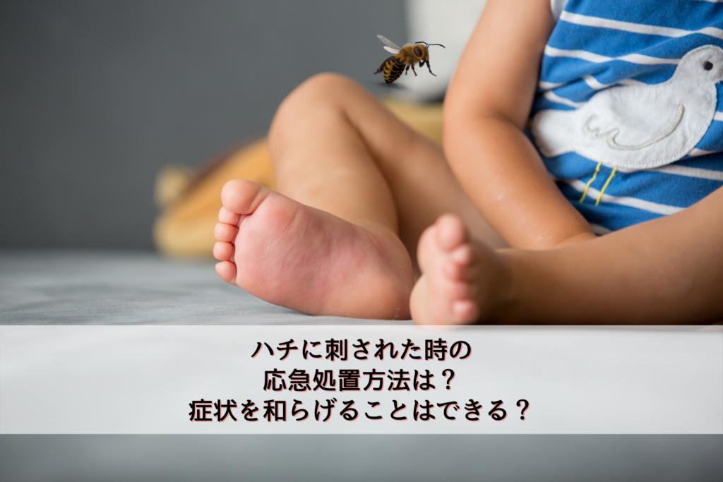 ハチに刺された時の応急処置方法は?症状を和らげることはできる?