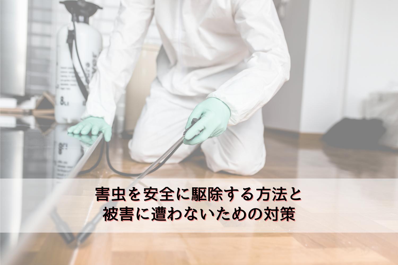 害虫を安全に駆除する方法と被害に遭わないための対策