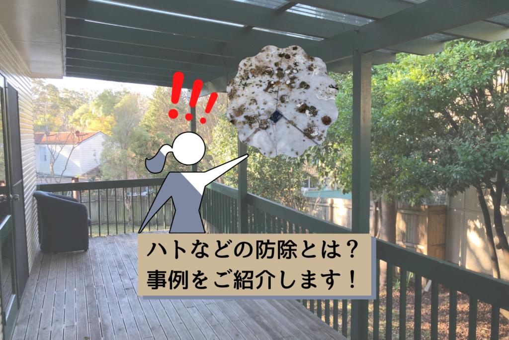 ハトなどの防除とは?事例をご紹介します!