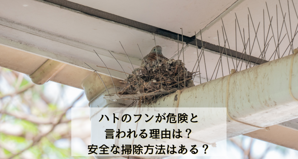 ハトのフンが危険と言われる理由は?安全な掃除方法はある?